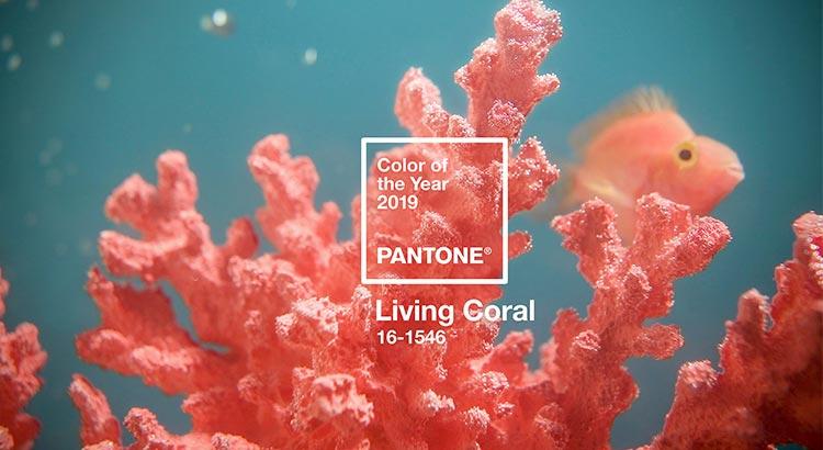 Color del año | Living Coral 16-1546